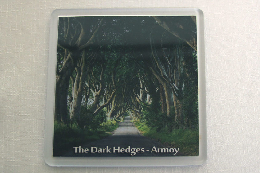 fridge-magnet-dark-hedges-1